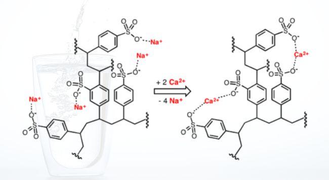 Mô tả quá trình trao đổi ion ở dạng công thức hóa học